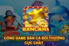 Bancah5 – Link tải game Bancah5 APK, IOS có tặng code năm 2021
